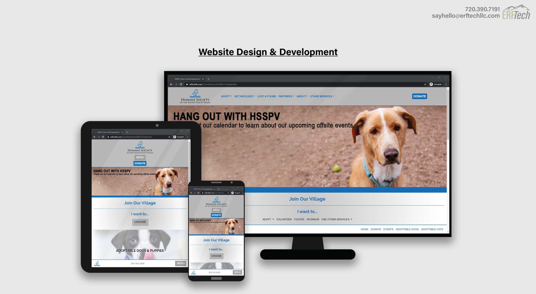 Website Management for HSSPV in Denver, CO